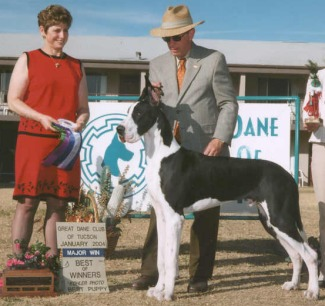 mantle great dane classic example